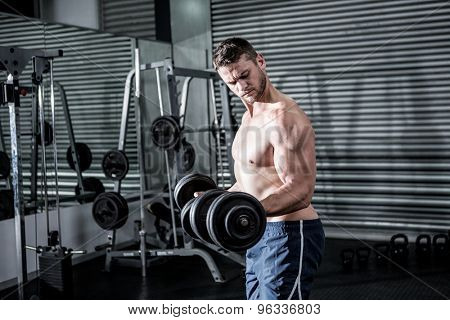 Concentrated muscular man lifting dumbbells in crossfit gym