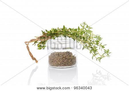 Thyme, Culinary Aromatic Herbs.