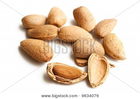 Almonds In Nutshell