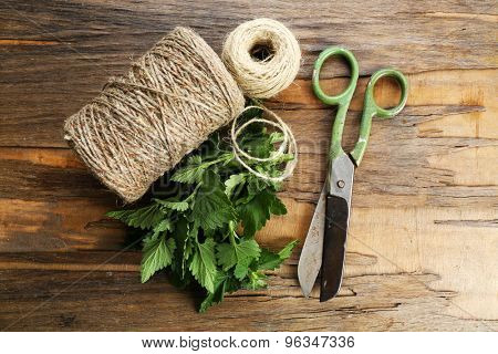 Leaves of lemon balm with rope and scissors on wooden background