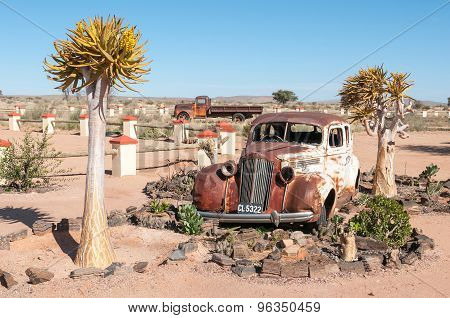 Old Car In A Succulent Garden Between Flowering Quiver Trees
