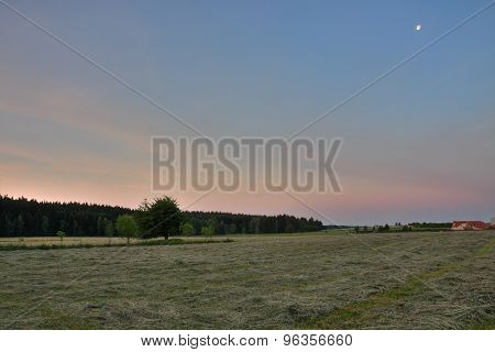 Sunrise Time In Summer Morning , Meadow With Cut Grass,forest  And Colour Sky