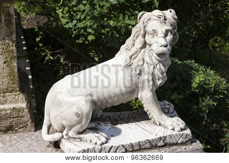 Marble lion on a big stone stairs in the palace park. Pavlovsk