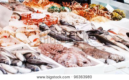 fish open market