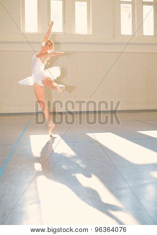 Young Woman Ballet