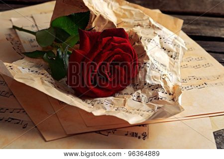 Beautiful rose on crumpled music sheets on wooden table, closeup