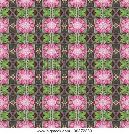 Beatiful Pentagram Flowers Seamless