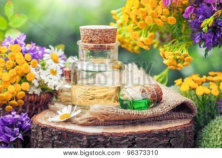 Bottles Of Essential Oil Or Potion, Healing Herbs And Wildflowers. Herbal Medicine.