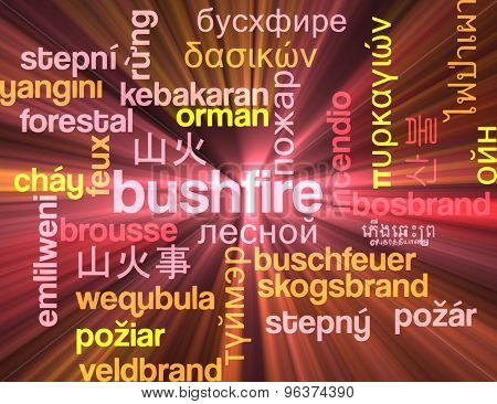 Background concept wordcloud multilanguage international many language illustration of bushfire glowing light