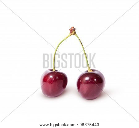Two Burgundy Sweet Cherries