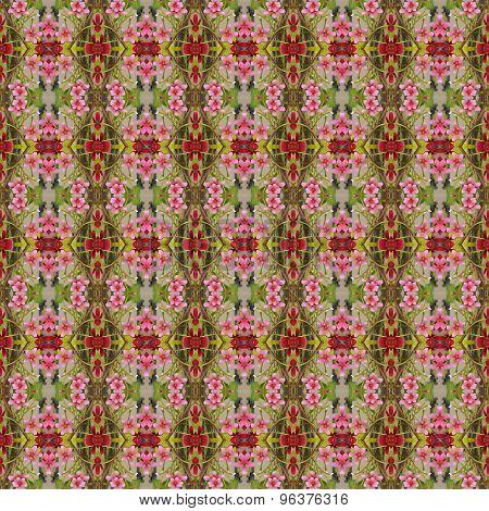 Quisqualis Indica Flower Seamless