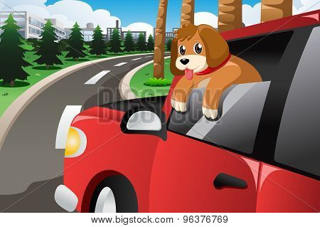 Dog Sticking His Face Out Of The Car Window