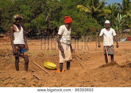 GOA, INDIA - 26 JANUARY 2015: Two elderly workers and one young adult dig soil in field