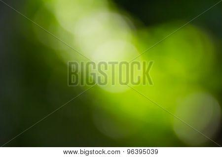 Blurred Light  Bokeh Abstract Light Background