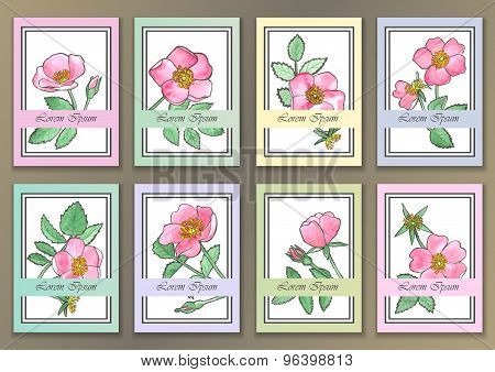 Set Vintage Posters with hand drawn watercolour roses