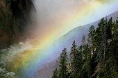Rainbow Mist poster