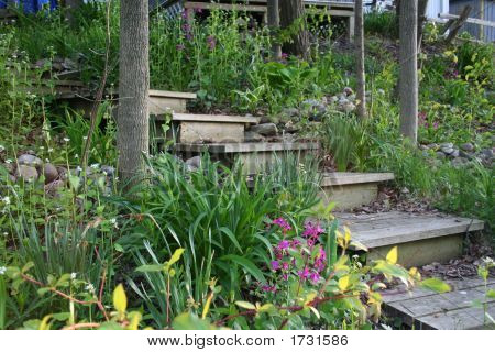 Wooden Stairs In A Lush Garden