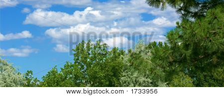 Horizontal Sky