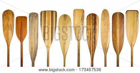 a row of 10 wooden canoe paddles, a variety of styles and shapes isolated on white  - paddling concept