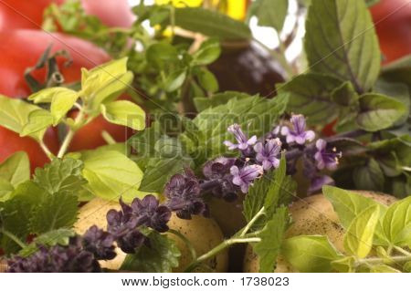 Cut Fresh Herbs And Vegatables