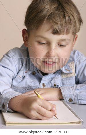 Homework - Schoolwork