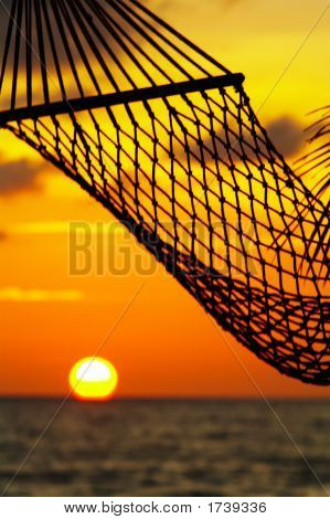 Hammock And Sun