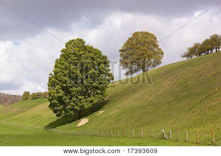 Englische Landschaft