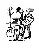 stock photo of planting trees  - Man Planting Tree  - JPG