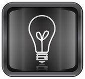 Light Bulb Icon.