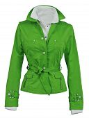 stock photo of habilis  - green jacket - JPG