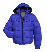 stock photo of jupe  - blue jacket - JPG