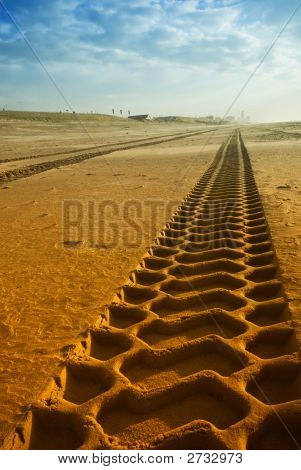 Tracks On The Beach