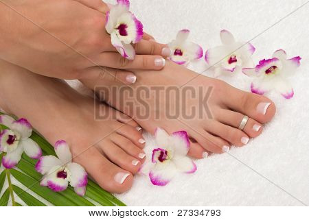 Spa treatment with beautiful exotic orchids