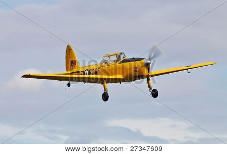 Aerobatic Chipmunk