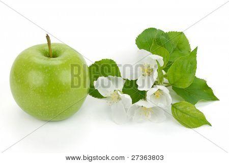 Grüner Apfel mit Blumen auf der weißen