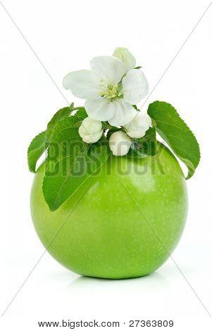 Grüner Apfel mit Blumen isolated on the white