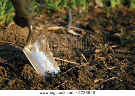 Planting Shovel