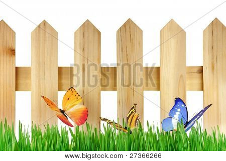 Butterflies on the meadow with fense,isolated on white.