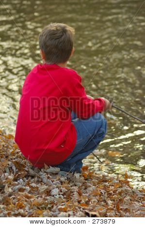 Boy With Stick At Brook
