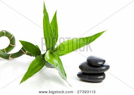 Bamboo With Black Zen Stones