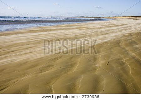Wind On The Beach