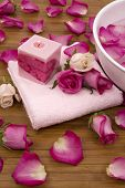 picture of pink rose  - Fresh bright pink roses - JPG