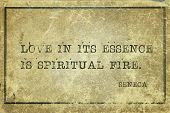 Love In Its Essence Is Spiritual Fire - Ancient Roman Philosopher Seneca Quote Printed On Grunge Vin poster