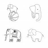Vector Design Of Elephant And Asian Sign. Collection Of Elephant And Elephant Stock Vector Illustrat poster