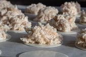 Homemade Coconut Macaroons Coconut Meringue Cookies In Baking Pan Paper, Close Up. Coconut Macaroons poster