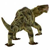 Inostrancevia Dinosaur Tail 3d Illustration - Inostrancevia Was A Carnivorous Cat-like Dinosaur That poster
