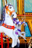 foto of merry-go-round  - horses in merry go round fairground attraction - JPG