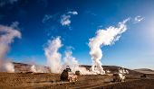 Sunshine Boivian desert landscape with huge steaming geysers and cars on offroad poster