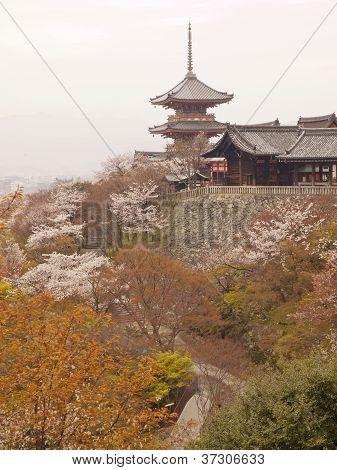Pagoda In Kiyomizudera Temple, Japan