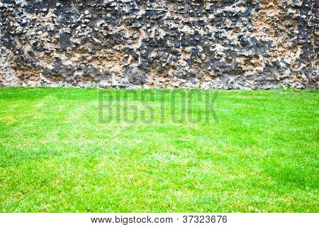 Grass And Stone Wall